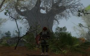 Tree of Tribute